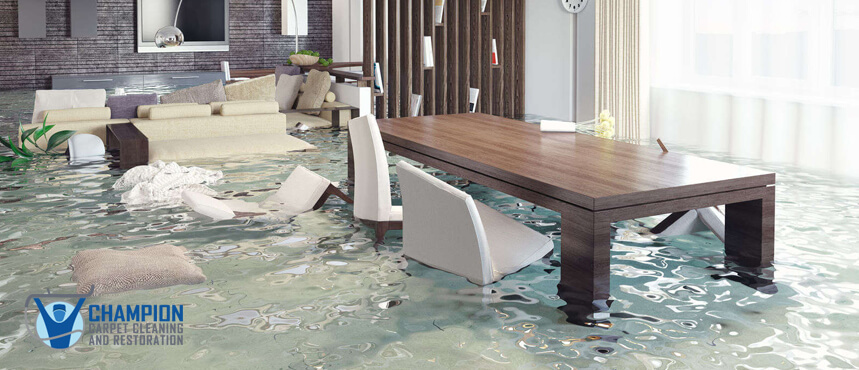 Water Damage Restoration in the Palm Beach County Area