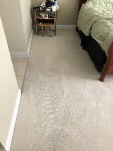Freshly cleaned carpet | Champion Carpet Cleaning in West Palm Beach, FL